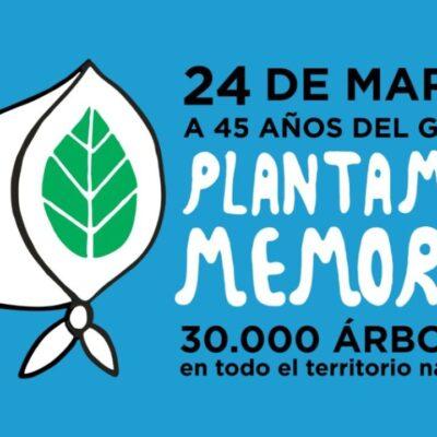 SE PLANTARAN MAS DE 30.OOO MIL ARBOLES POR LA MEMORIA